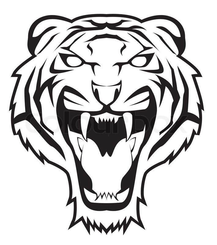 /images/com_odtatierkdunaju/teams/2019_White-tigers.jpg